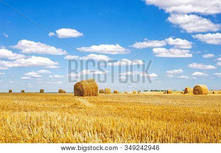 Haystack Harvest Spring Field Landscape. Haystack Agriculture Field Landscape. Agriculture Field Hay