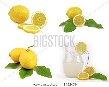 Lemon Collection 1