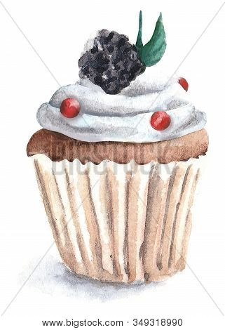 Hand Painted Watercolor Cupcake Illustration. Watercolor Illustration Of Cupcake. Cake, Cupcake, Blu
