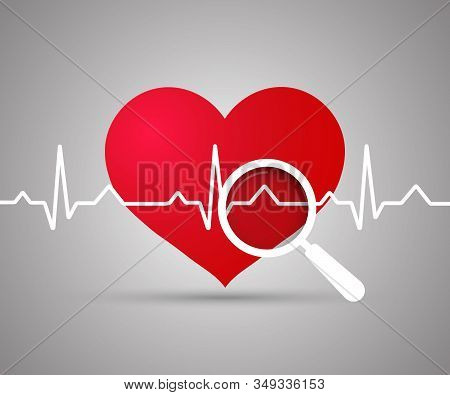 Ekg Heart. Red Heart With Ekg On White - Medical Design. Electrocardiogram, Heartbeat, Magnifying Gl