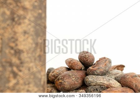 Lot Of Whole Fresh Brown Cocoa Bean Back Focus With Cocoa Butter Isolated On White Background