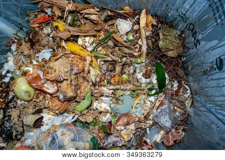 Pile Of Organic Food Waste Trash In A Plastic Bag Container Being Collected For Recycling