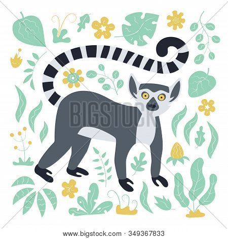 Cute Funny Ring-tailed Lemur And Tropical Plant. Madagascar Exotic Lemur Catta. Vector Illustration