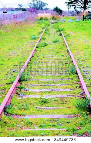 Forgotten Railroad Tracks Which Is Now Overgrown By Grass Where A Passenger Cable Car Once Traveled