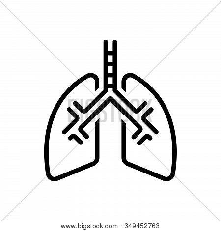 Black Line Icon For Lung Breath Human Pulmonary Respiratory Bronchi Trachea Organ Biology Medical Ch