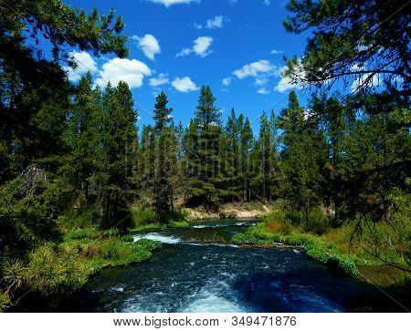 Down River View - Looking Downstream On The Fall River - La Pine State Park - West Of Sunriver, Or