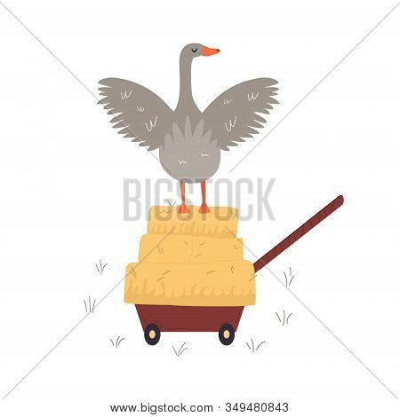 Vector Illustration Of A Farm Goose, Farm Animal