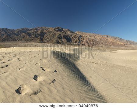 Footsteps In Sandy Dunes
