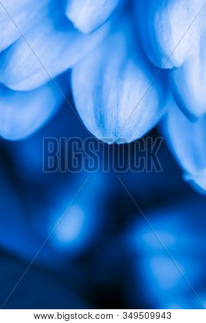 Retro Art, Vintage Card And Botanical Concept - Abstract Floral Background, Blue Chrysanthemum Flowe