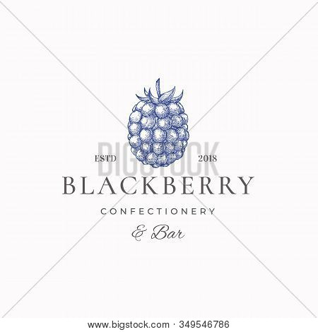Blackberry Confectionary Abstract Vector Sign, Symbol Or Logo Template. Hand Drawn Black Berry Sketc