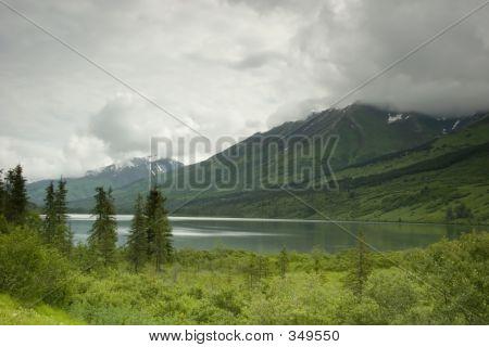 Calm Lake In Summer