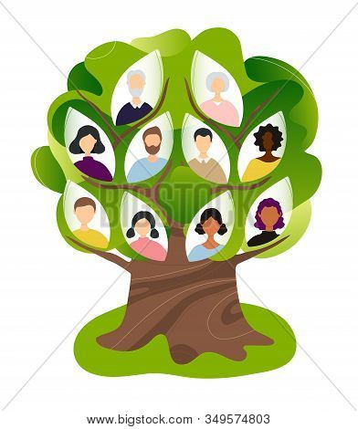 Family Genealogical Tree With Different Nationalities. Flat Modern Trendy Style.vector Illustration