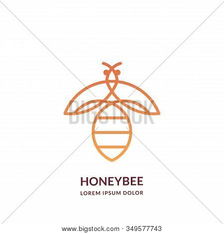 Yellow Bee, Line Art Logo Emblem Design Template. Vector Abstract Honeybee Linear Icon. Honey Packag