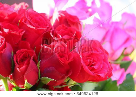 Close-up Of Red Roses Group With Blur Pink Rose Background In Street Market , Outdoor Roses Sells, B