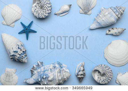 Sea Shells, Starfish In Shape Frame. Trendy Aquamarine Light Blue Pastel Color Hello Summer Backgrou