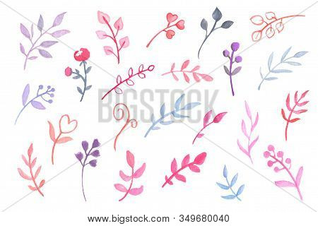 Pink Blue Floral Element On White Background. Handdrawn Watercolor Flower And Leaf Clipart. Spring F
