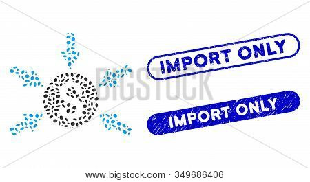 Mosaic Money Income And Distressed Stamp Seals With Import Only Text. Mosaic Vector Money Income Is