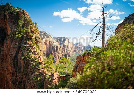 Zion Natural park in Utah USA. Beautiful view of valley and path for hikers. Amazing nature of USA