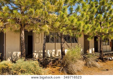 Abandoned, Destroyed Buildings At 6 Road. Trees In Front Of The House. Ghost Town, Inyo National For