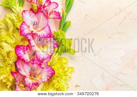 Border Frame Made Of Yellow And Pink Gladiolus Flowers On Light Pink Background. Pattern Of Gladiolu