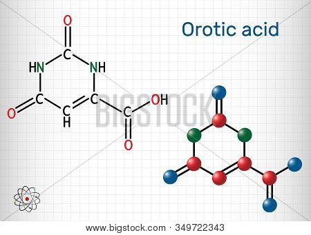 Orotic acid molecule. It is a pyrimidinedione and a carboxylic acid. Structural chemical formula and molecule model. Sheet of paper in a cage poster