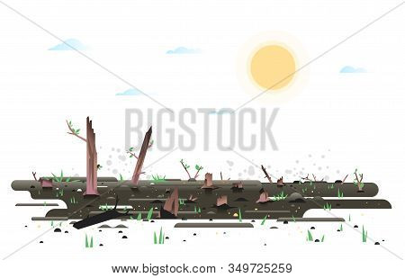 Growth Green Small Young Leaves And Grass After Wildfire, Nature Reborn After Fire Concept Illustrat