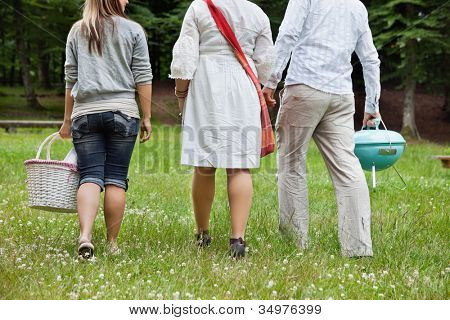 Rear view of friends in casual wear on a weekend picnic in forest park
