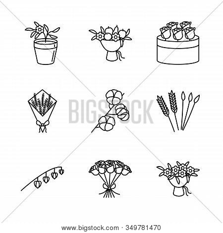 Flower, And Dried Flowers Line Icon Set. Physalis Peruviana Flowerpot, Lavender, Cotton Branch, Rye,
