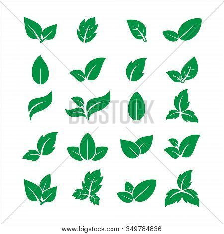 leaf Icon, leaf Icon Eps10, leaf Icon Vector, leaf Icon Eps, leaf Icon Jpg, leaf Icon Picture, leaf Icon Flat, leaf Icon App, leaf Icon Web, leaf Icon Art, Eco nature healthy concept. Green logotype natural plant symbol. Sign design for web site, mobile a
