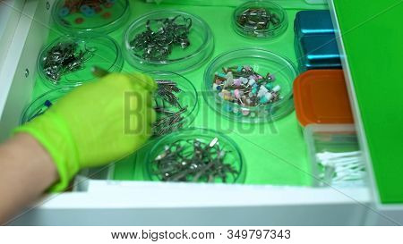Stomatologist Choosing Instruments For Curing Patients Teeth, Professional Help