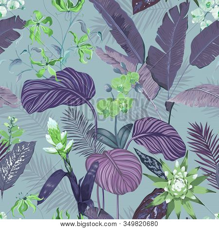 Seamless Tropical Background, Floral Print With Exotic Guzmania Orchid Blossoms, Jungle Flowers And