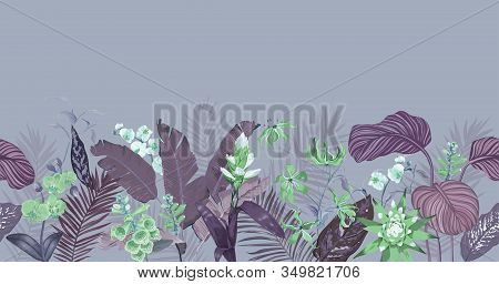 Seamless Tropical Background, Floral Wallpaper Print With Exotic Guzmania Orchid Blossoms, Jungle Fl