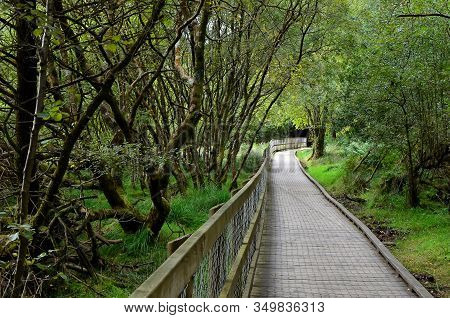 Walking Route Through Nature Park In Glendalough