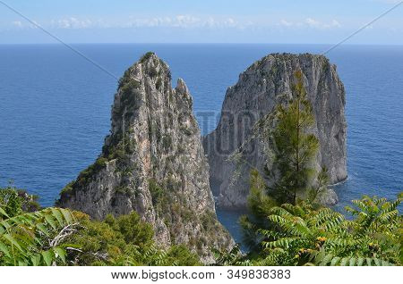 Rocks And Nature Capri Island In Italy Photography