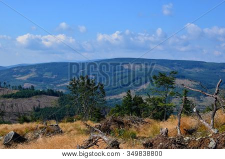 Nature Beauty Landscape With Hills In Summer