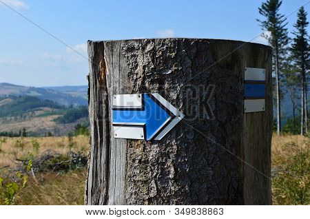 Blue Arrow On Stump Tourist Sign Detail Photo