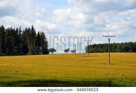 Summer Landscape With Field And Power Line Photography