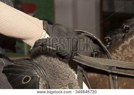 Reins In The Hands Of A Rider On Horseback