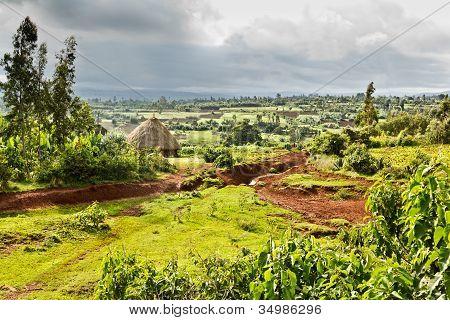 Ethiopian Rural Landscape