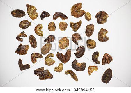 Myrobalan Or Terminalia Chebula Or Black Chebulic Myrobalan Known As Harde In India Used For Health