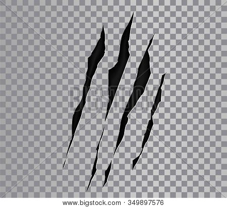 Claw Marks Of A Monster Or Wild Beast. Claws Scratches. Animals Paws, Attack Tracks. Vector Scratche