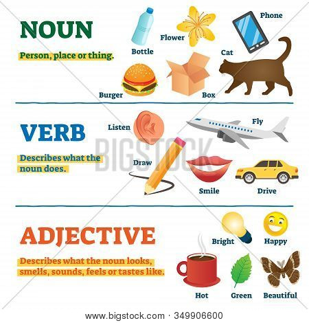 Nouns, Verbs And Adjectives School Study Guide, Vector Illustration Collection. Illustrated Examples