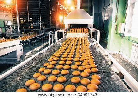 Bakery Production Line With Sweet Cookies On Conveyor Belt In Confectionery Factory Workshop, Food P