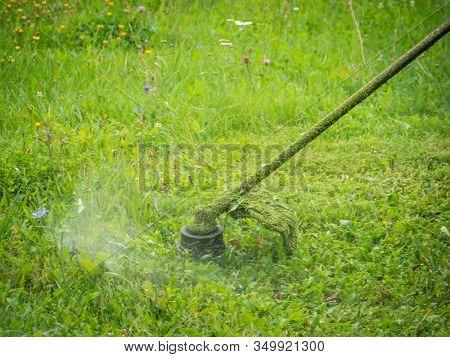 Mowing Green Grass. Hand Trimmer Mows. Closeup