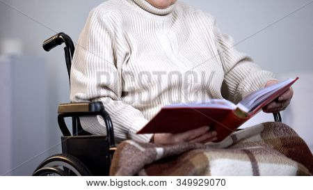 Woman Wheelchair Watching Photos, Missing Family, Pension Loneliness, Nostalgia