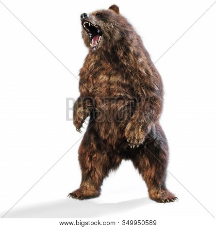 Large Brown Bear Standing In An Aggressive Posture On An Isolated White Background. 3d Rendering
