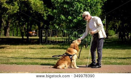 Blind Man Training Guide Dog In Park, Giving Obedience Commands, Impairment