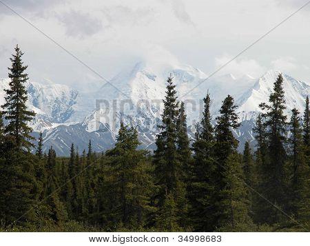 Denali - Alaska