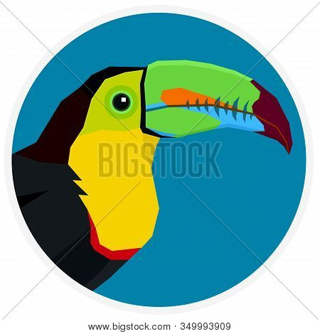 Wild Birds Keel-billed Toucan Vector Illustration Cartoon Flat Style Round Frame