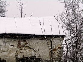 Old House Roof In The Snow Next To A Tree During A Snowfall. Stock Photo